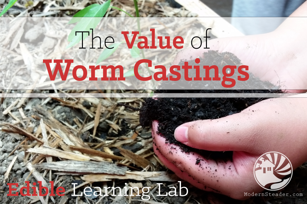 Learning about the value of worm castings
